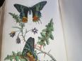 LIVRE ANCIEN. 19eme. HISTOIRE NATURELLE, Livres rares (1ère édition, livres illustrés, tirages limités), Livres | Puces Privées